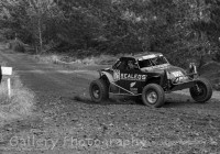 Woodhill 100-456-2